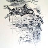 1914 Fritz Behn Litographie - Leopard Iraku