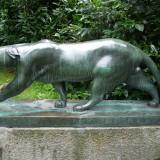 Der Panther in Köln, Foto Joachim Zeller